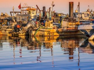 Poole Quay Boat Haven , Port of Poole Marina commercial fishing Poole Tourism