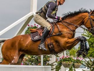 Mitsubishi Motors Badminton Horse Trials. The World's Premier 3-Day-Event Cross Country Day